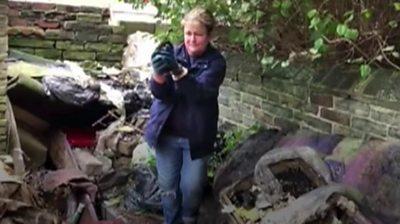 Charity providing veterinary care to Bradford's stray cats