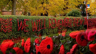A New Forest Village has come together to create a display of 4,000 poppies ahead of Remembrance Day.
