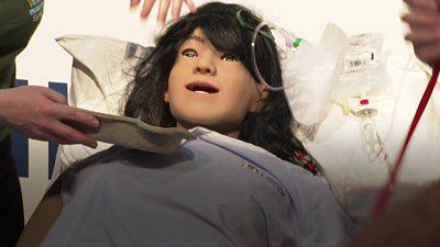 simulation doll