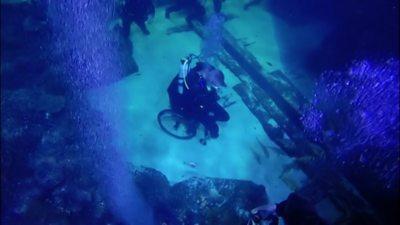 disabled diver