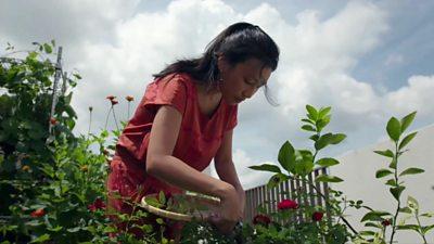 Joanna working her garden