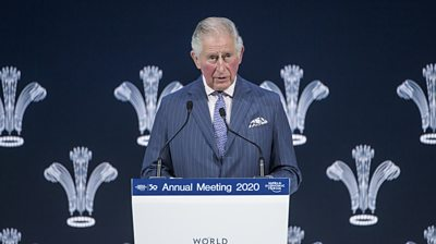 Prince Charles speaking at the World Economic Forum