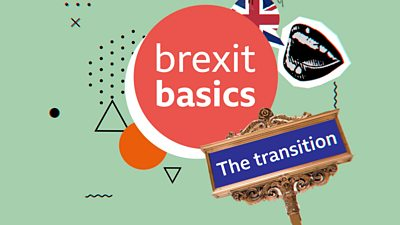 Collage with the words 'Brexit basics' and 'the transition'