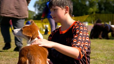 Playing flyball with his dog, Slushie, helps 12-year-old Mitchell overcome feelings of social anxiety.