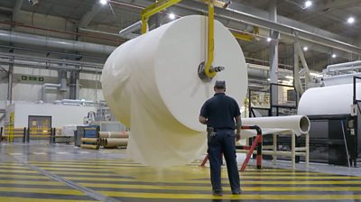 Giant roll of toilet paper in a factory