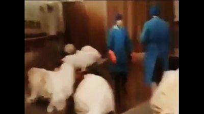 Corona mortuary in Iran