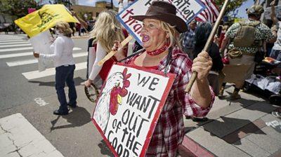 Protester in California