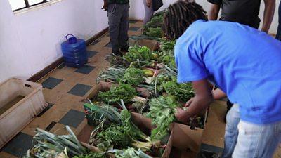A farmer sorting vegetables in Zimbabwe