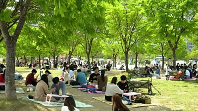 People picnic in a park