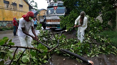 Rescue workers cut tree branches that fell on a truck trailer after heavy winds caused by Cyclone Amphan, in Kolkata