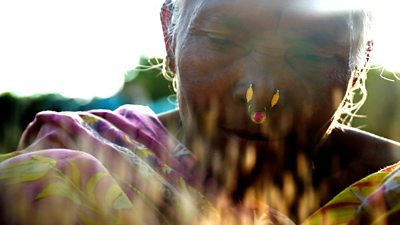 Scientist Debal Deb is fighting to save thousands of India's traditional rice varieties.