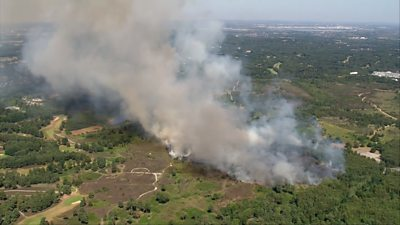 Firefighters tackle Chobham Common fire in Surrey