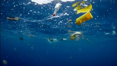 The expedition found that as much as 21 million tonnes of plastic fragments are suspended in the ocean.