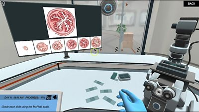 A virtual science lab