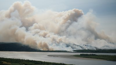 Why forest fires in Siberia, Russia threaten us all thumbnail