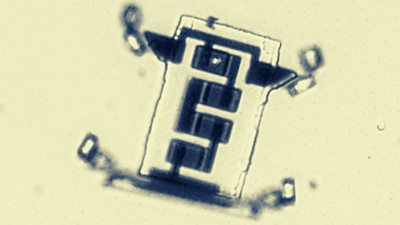 BBC News - Scientists create a microscopic robot that 'walks'