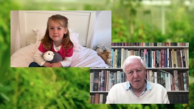 David Attenborough is asked questions by children