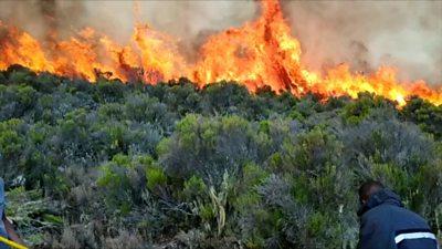 Mount Kilimanjaro fire: Firefighters struggle to contain Tanzania blaze thumbnail