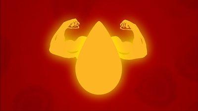 Blood plasma animation