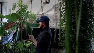 A Cheltenham plant lover has converted his spare room into a greenhouse which houses some rare species.