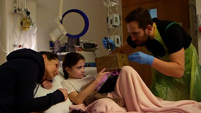 The puppet show in a box entertaining children in hospital thumbnail