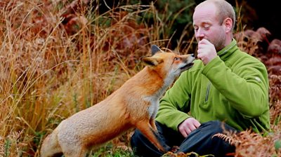 A photographer with a gift for befriending wildlife has formed a close bond with a wild vixen.