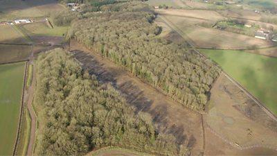 South Cubbington Wood