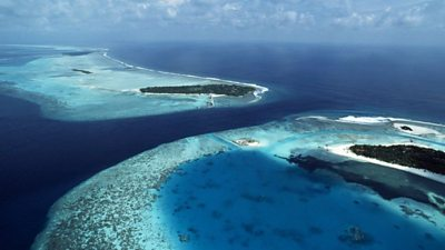 Researchers have discovered that hundreds of islands appear to be growing in the Pacific Ocean, despite the threat of rising sea levels.