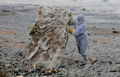 Sri Lanka's beaches swamped with burning ship debris