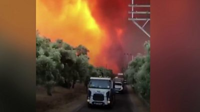 Tourists and local residents have been evacuated in Bodrum and Marmaris, as wildfires raged.