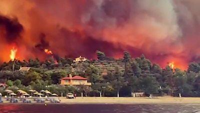 Evia wildfires