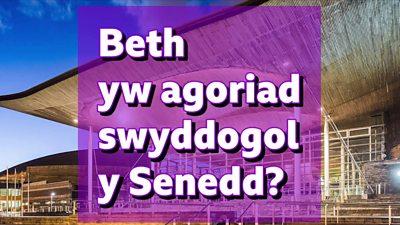 'Beth yw agoriad swyddogol y Senedd?'