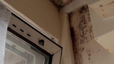Mould in flat