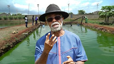 Father Godfrey Nzamujo at the Songhai farm