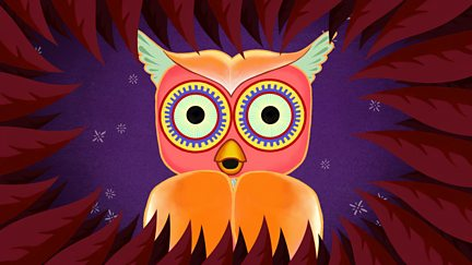 Why Owl's Head Turns All the Way Round