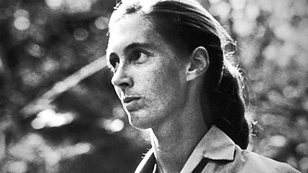 Jane Goodall: Beauty and the Beasts