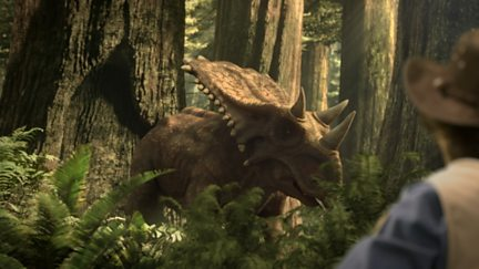 Centrosaurus and Video