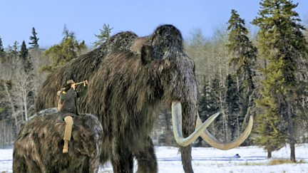 Woolly Mammoth and Ice