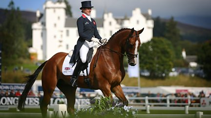 Show Jumping and Dressage