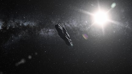 The Mystery of 'Oumuamua