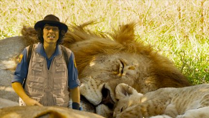 Andy and the Lions