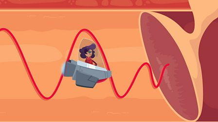 Sound and vibration - KS2 Science - BBC Bitesize