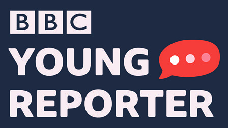 Image result for bbc young reporter logo""