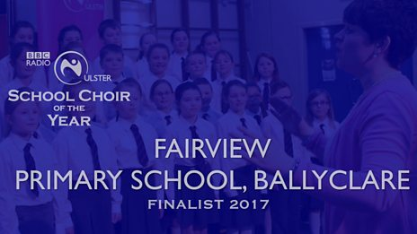 Meet The Finalists 2017: Fairview Primary School, Ballyclare