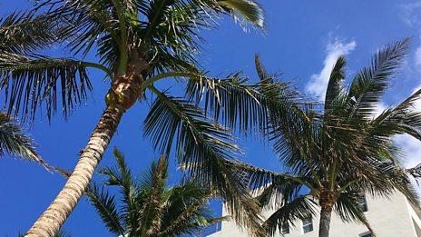 Pete Tong b2b Damian Lazarus in Miami