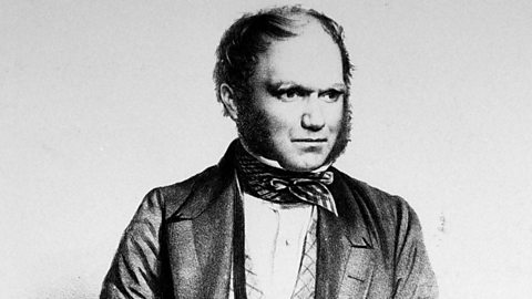 Darwin: On the Origins of Charles Darwin