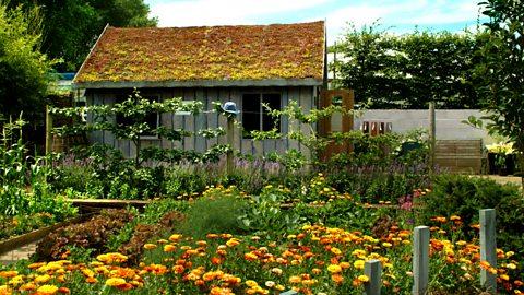 Bbc Radio 4 Gardeners Question Time