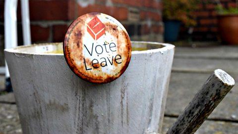 Brexit vote splits family