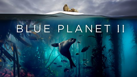 blue planet ii show image