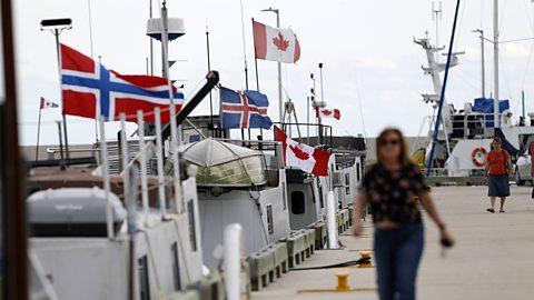 Canada's surprising Icelandic legacy